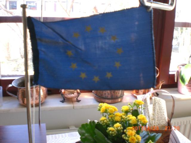 EU-flagga köket